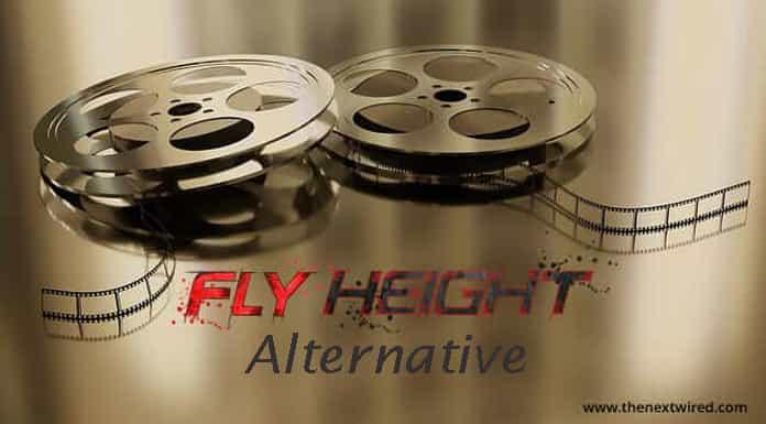 Flyheight
